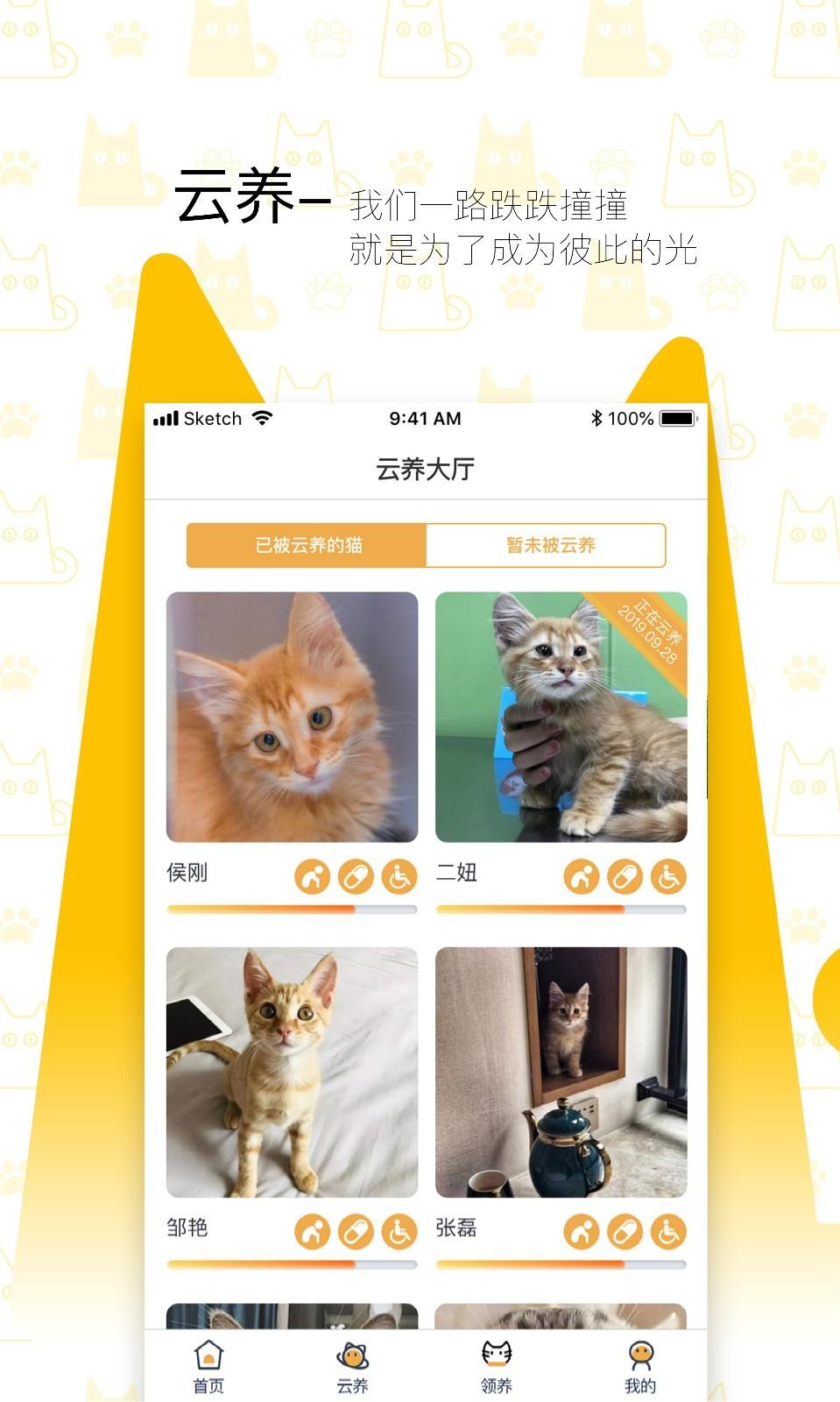 我要猫app图4