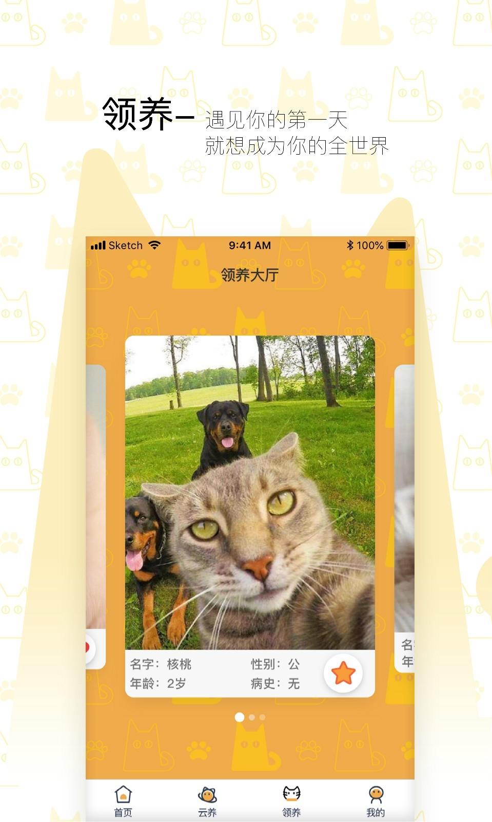 我要猫app图2