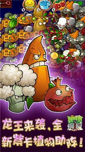 植物大战僵尸魔幻版图2
