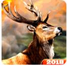 免费猎鹿3D