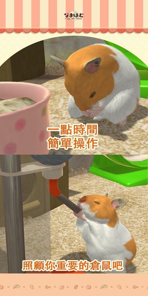 我的仓鼠最新破解版图8