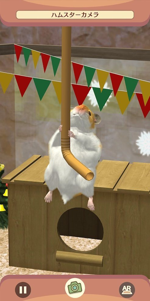 我的仓鼠最新破解版