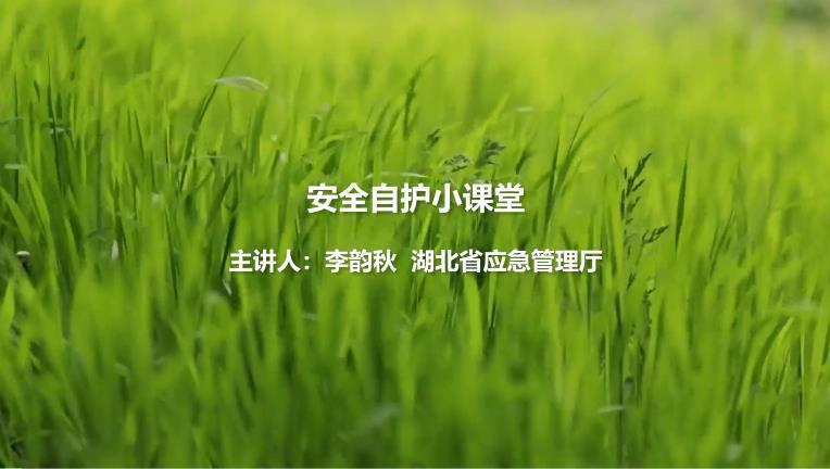 湖北省青少年法治安全教育系列视频课之安全自护小课堂图3