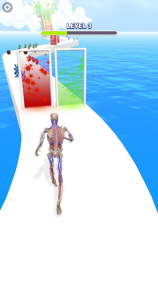 人类跑步进化